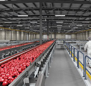 Led Lighting Products For Food Processing And Food Storage