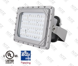 LED Explosion Proof Lights - Defender-S UL844 C1D1
